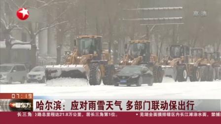 视频 哈尔滨: 应对雨雪天气 多部门联动保出行