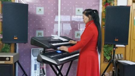 《心上的罗加》视频双电子琴演奏