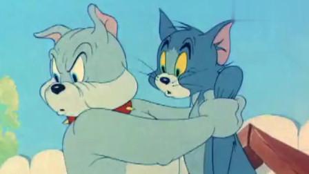 猫和老鼠小鬼难缠,小狗真的太可爱了