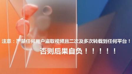 洛天依对唱歌曲ktv字幕版本合集