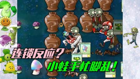 植物大战僵尸:什么叫连锁反应?炸的小蛙手忙脚乱!