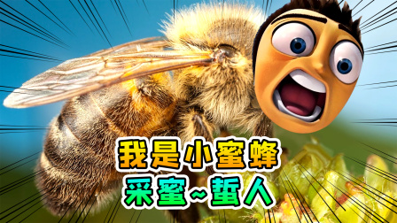 蜜蜂模拟器:我变成了一只小蜜蜂,采蜜蜇人样样通