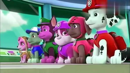 儿童早教动画,汪汪队接到救援恐龙蛋任务准备出发!