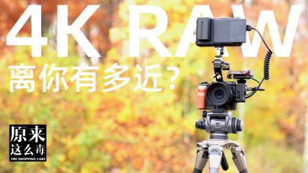 4K RAW离你有多近?——适马fp Cinema DNG视频枫叶大作战|原来这么毒 61集