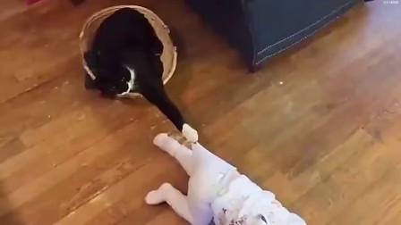 当猫遇上孩子,一段奇妙的旅程发生了!