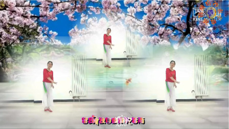 特效广场舞《红尘雨》演示:美萍,制作:永不疲倦