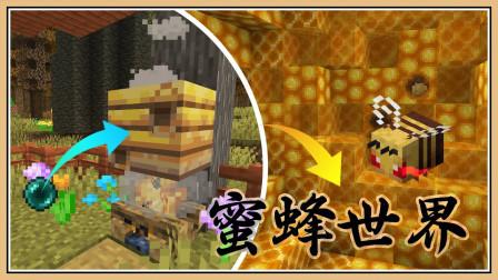 鬼鬼【我的世界】深入蜜蜂的世界!甜蜜蜜【流亡麦块 #13】杀人蜂涌现