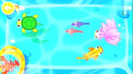 宝宝巴士:跟奇奇一起捞鱼吧,认识孔雀鱼,章鱼,龙虾等!