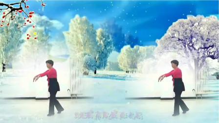 特效广场舞《水云间》演示:小许