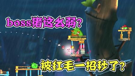 愤怒的小鸟2:黄毛和红毛打赌,结果boss猪真被一招秒了?