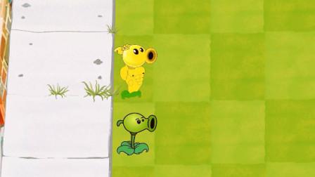 植物大战僵尸:豌豆们在努力的坚持着,僵尸也在努力进攻着