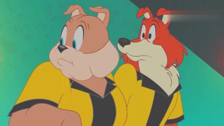 搞笑动画:TOM好像做错了事情,几位狗哥都生气了!