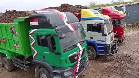 彩色大卡车玩具运输沙土出发