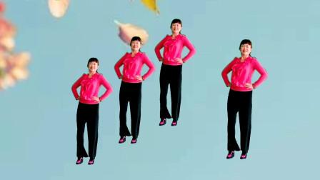 美久广场舞《给力》动感现代舞 简单易学健身 表演:雪莲