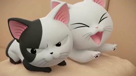 甜甜私房猫:可齐都饿了,肚子咕咕叫,赶快吃吧