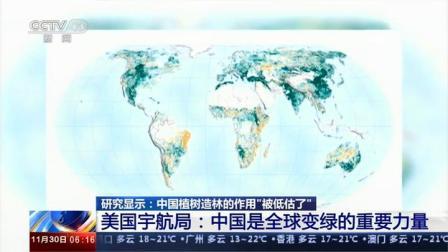 植树造林作用被低估? 美国宇航局:中国是全球变绿的重要力量
