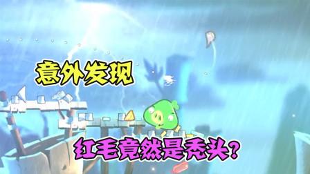 愤怒的小鸟2:打国王猪的途中,意外发现红毛竟然是秃头?