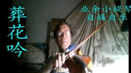 中外名曲小提琴—葬花吟—红楼梦插曲
