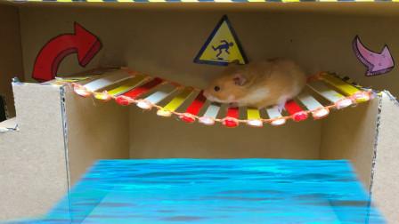 其他动画-小仓鼠的水迷宫挑战-Hamster Stories