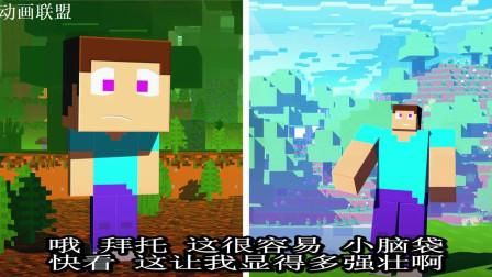 我的世界动画-史蒂夫的二选一挑战-Blue Monkey