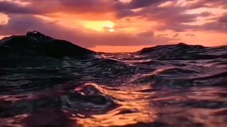 日出东方却落于西的意思是,我爱你有开始就没有结束