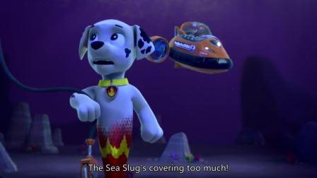 汪汪队:海蛞蝓醒了,现在毛毛可以把绞盘勾上了。