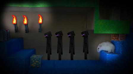我的世界动画-小仓鼠挑战MC迷宫-Hamster Stories