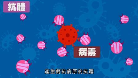 现今开发疫苗的三种主要类型:减毒活疫苗、灭活疫苗、新型mRNA疫苗,另有腺病毒载体疫苗