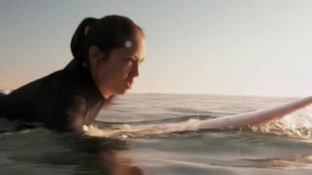 美女海上冲浪,不想鲨鱼突然出现,美女命丧鲨口