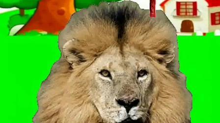 儿童益智儿歌:野兽动物名称