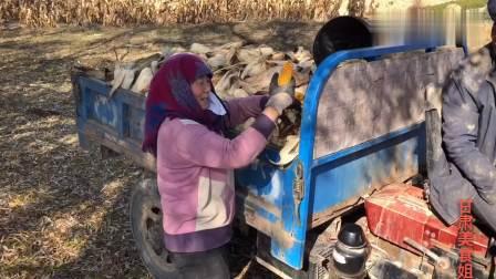 实拍甘肃会宁,农户人家的真实生活,想了解的进来看看吧!