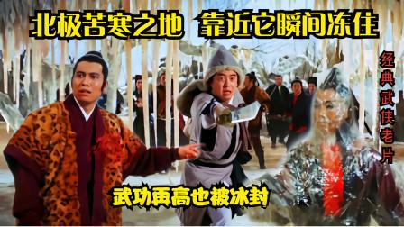 武侠片:北极苦寒之地,武功再高的人,靠近冰田也会瞬间冰封!