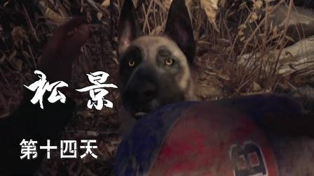 【小握解说】《松景:重返》第十四天:只闻犬吠 不见犬身