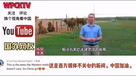 老外看中国:中国植树造林被低估?外国看中国沙漠治理奇迹,感谢中国世界更绿