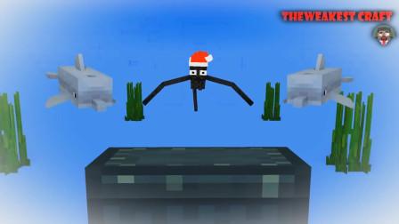 我的世界动画-怪物学院-Herobrine的圣诞礼物-Theweakest Craft