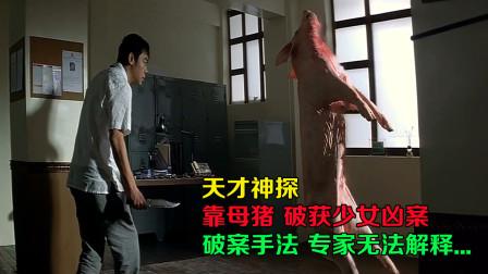 天才神探,靠母猪破获少女凶案,破案手法专家都无法解释