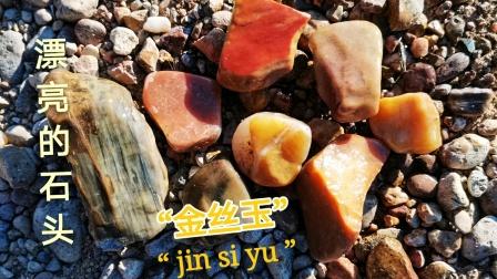 捡了一堆金丝玉原石,,认识这种石英岩玉石,个个漂亮色彩多样