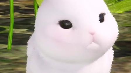 小白兔与大灰狼第三集,我改吃胡萝卜了,小白兔快来和我玩
