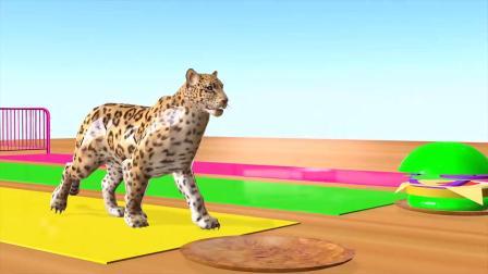 幼儿色彩启蒙,3D河马豹子恐龙狮子吃汉堡变化皮肤色彩