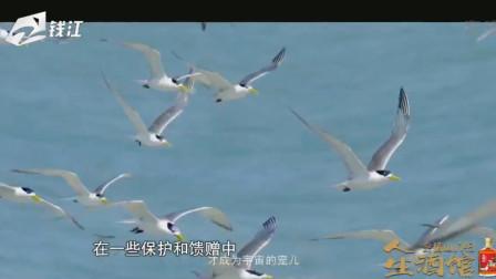 人生酒馆:浙江卫视纪录片《东向大海》主创分享会