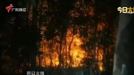 今日关注 2021 深圳:大南山突发火灾  超六百人参与救援