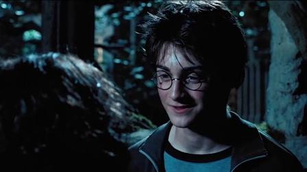 哈利·波特与阿兹卡班的囚徒(完)哈利的母亲一定很温柔
