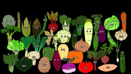 认识常见的蔬菜萝卜西蓝花等食物