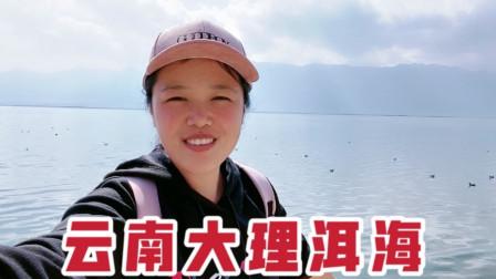 三天玩遍云南大理古镇,大理古城双廊镇喜洲镇,来洱海边坐看风景。