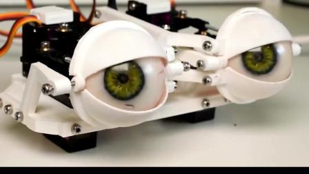 3D打印:机器人双眼结构,感觉如何?