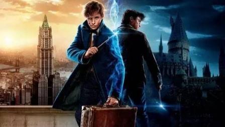 《神奇动物在哪里》继哈利波特后,魔法世界的新系列(2)