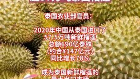 中国成泰国榴莲全球最大买家