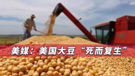 """中国又一次出手""""救了""""美国,美媒:中国再称美国最大贸易伙伴"""