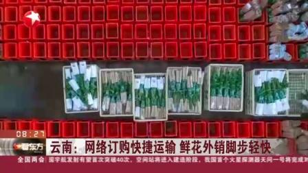 视频|云南: 网络订购快捷运输 鲜花外销脚步轻快