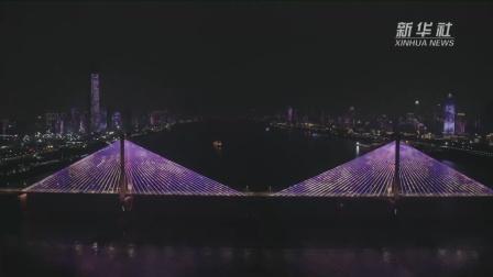 武汉全城上演樱花主题灯光秀